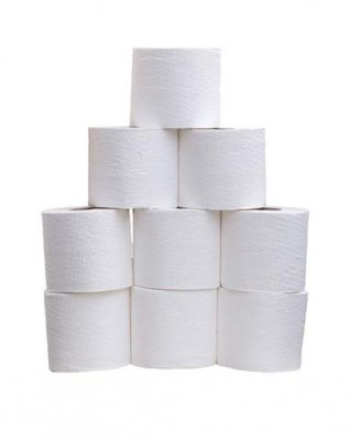 5 Things You Must Take To A Festival - Loo Roll